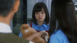 hashikan_ikimono5_001.jpg