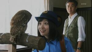 hashikan_ikimono8_019.jpg