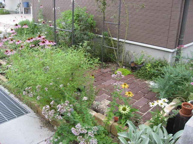 2010年7月花壇