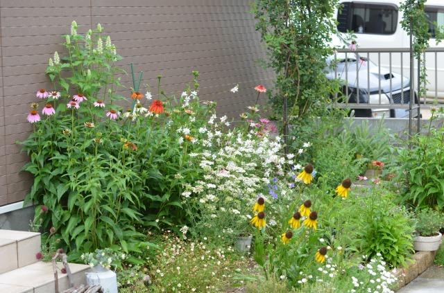 2012年6月花壇