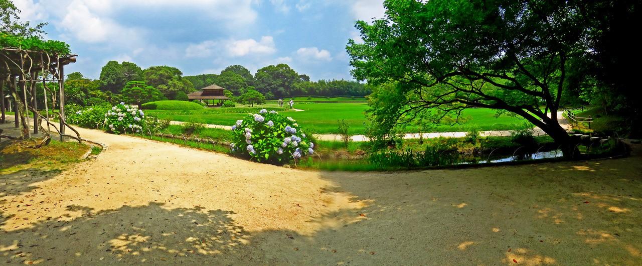 20170714 後楽園今日の藤棚付近から曲水越えに眺めた園内ワイド風景 (1)