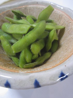 20170811 枝豆