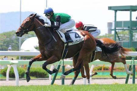 【競馬】クリノクーニングの次走が函館2歳Sらしいんだが・・・