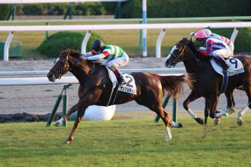 【競馬】引きこもリーディング戸崎圭太、レパードSの乗り馬がいなかったのでついに小倉初参戦w