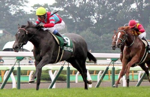 【競馬】重賞2勝馬ブランボヌールが米国で繁殖入りへ
