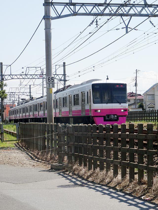 Shin_keisei_pink.jpg