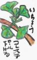 4絵手紙民間薬草 (1)