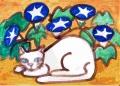 4ネコ迷画、朝顔と白い猫