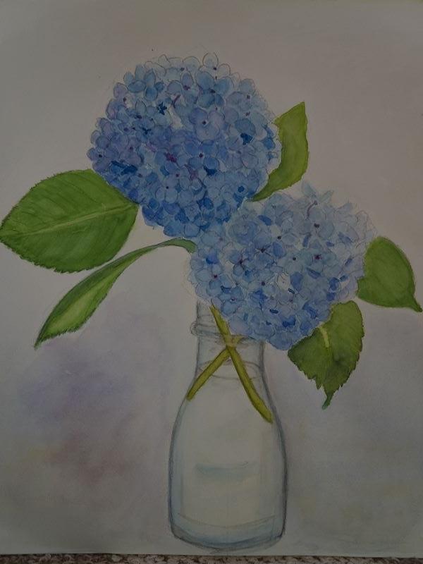 紫陽花の水彩画