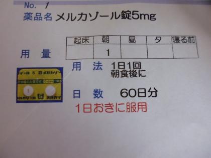 P1080043.jpg