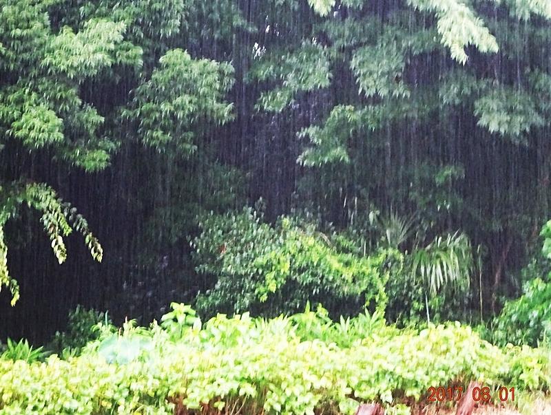 DSC09390激しい雷雨