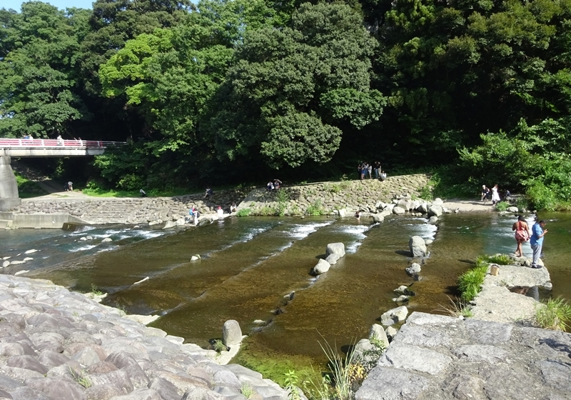 DSC09639酒匂川