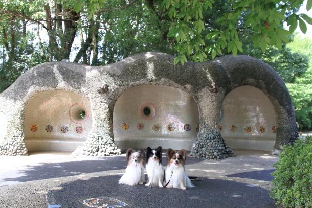 昭和記念公園 子供の森00025293