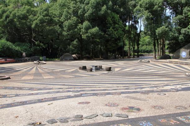 昭和記念公園 子供の森00025288