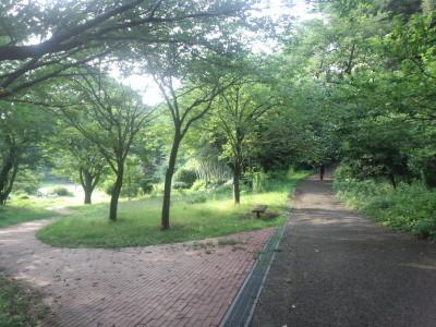 三ツ池トレイル