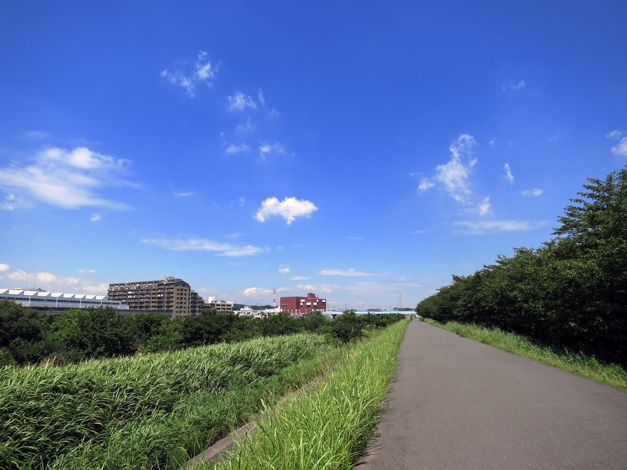 170809鶴見川-02