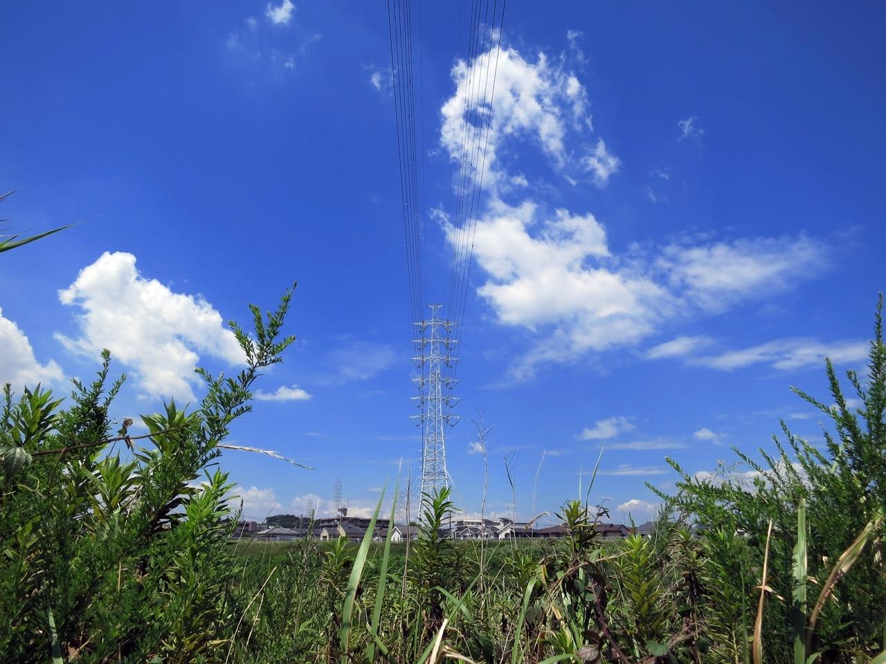 170809鶴見川-04