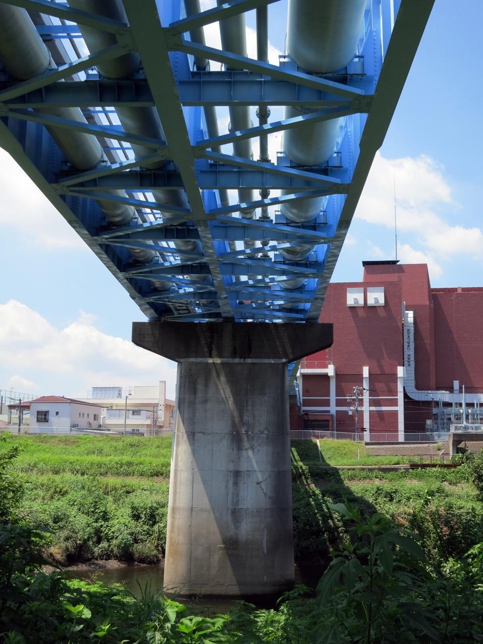 170809鶴見川-05