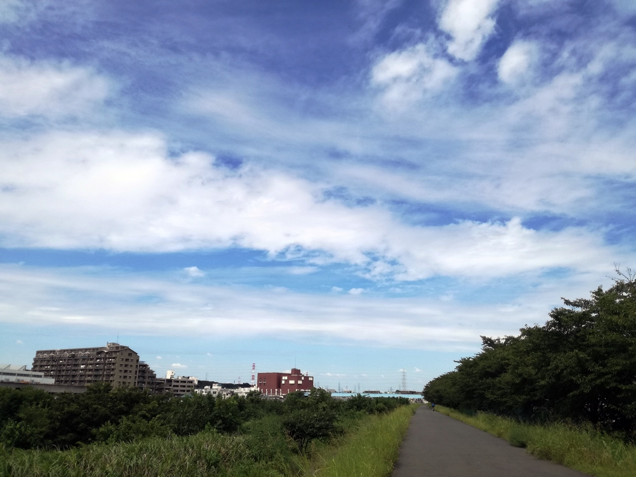 秋の気配2017-03