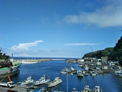 8月6日の真鶴港