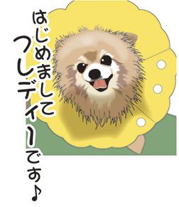 ピスコ日記 ふうちゃん1