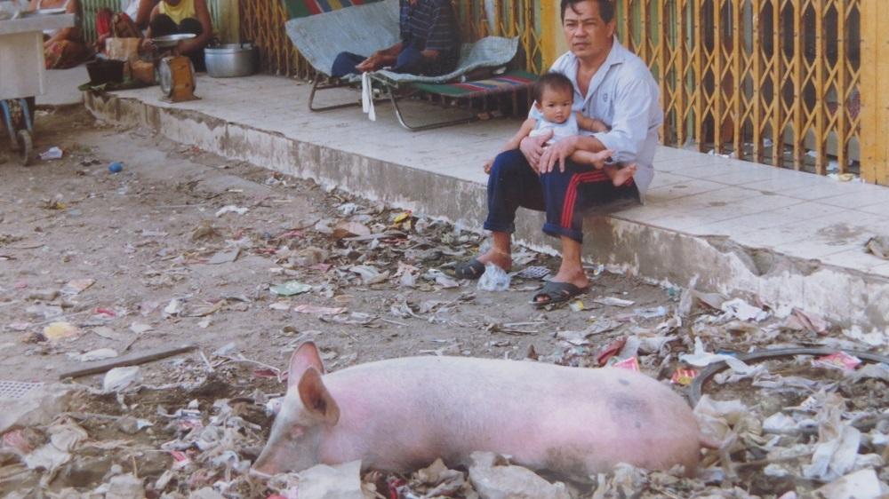 4豚もIMG_0302