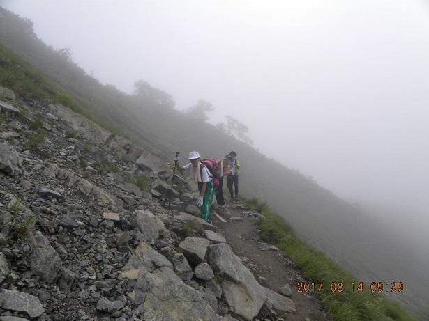 霧の中を登る blog