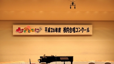 2014_07_jul_011.jpg