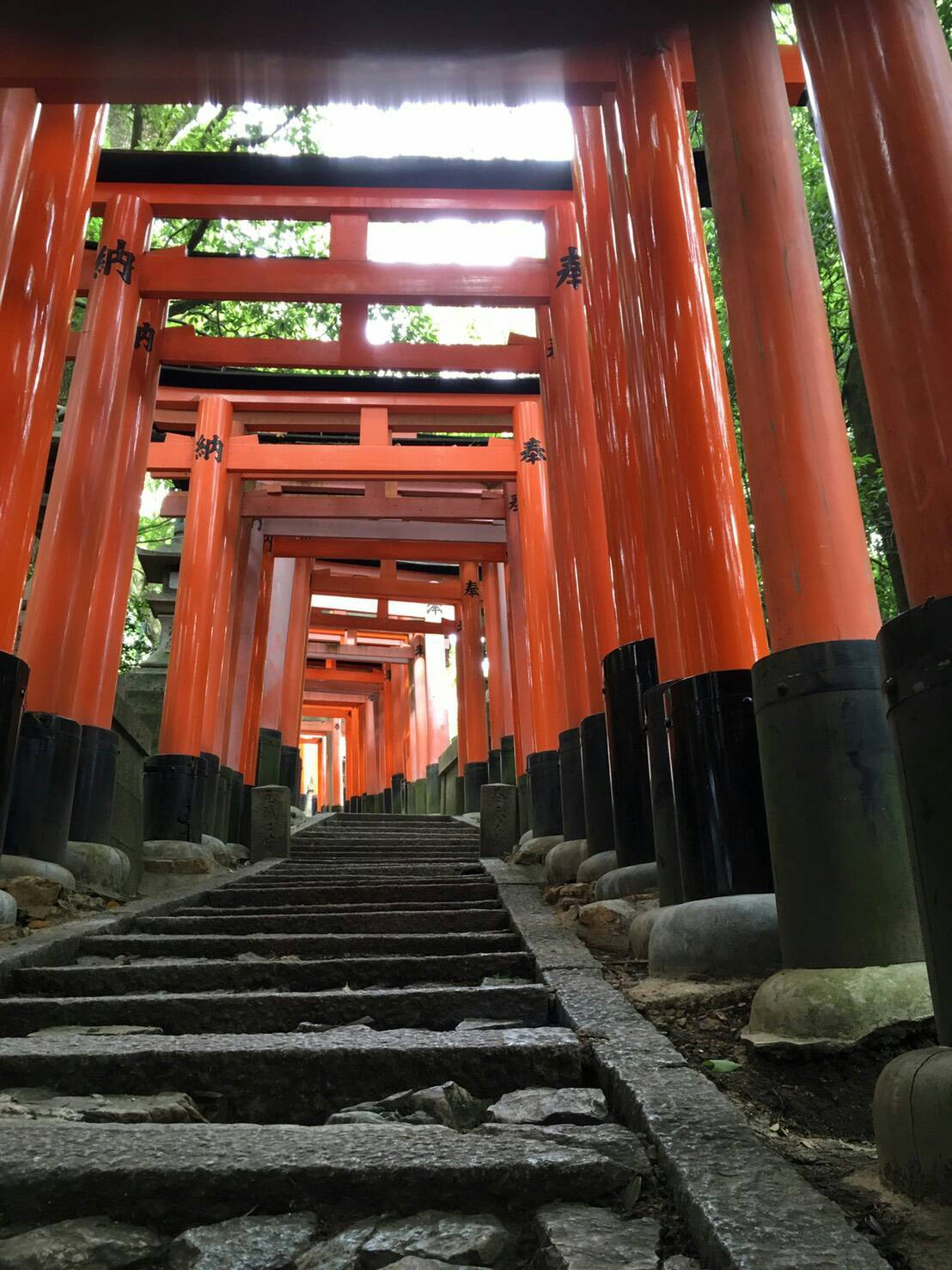 京都の神社 鳥居