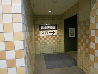IMG_2574-370.jpg