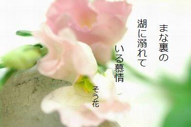 20170710183538a7d.jpg