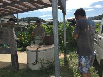 農園きらり九州の撮影11