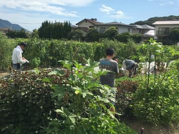 農園きらり九州の撮影13