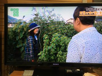きらり九州放送21