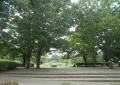 金山緑地公園