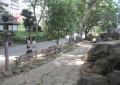 石庭から参道を見る