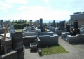 円乗院のお墓
