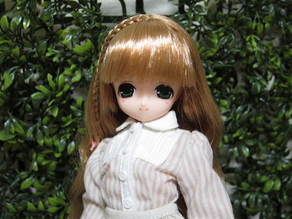 midori (1)