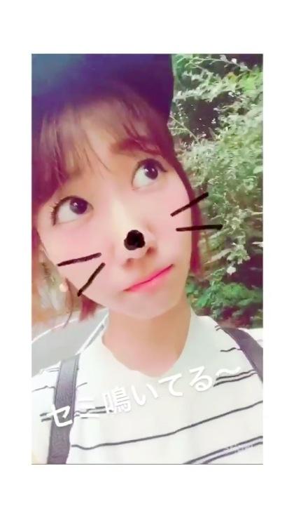 yuki_s170803_2.jpg