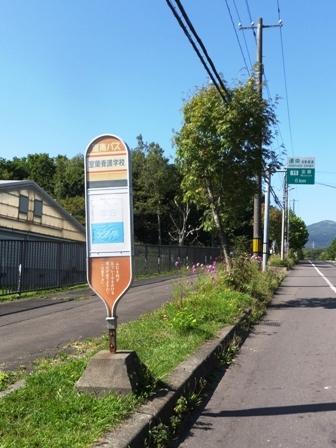 緑道散策5