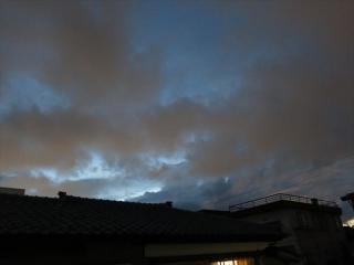 IMG_7309a.jpg