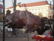 子牛の丸焼き