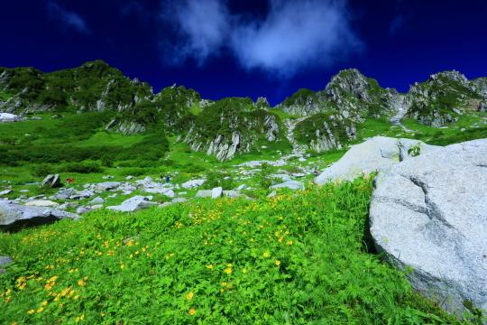 お花畑と宝剣岳