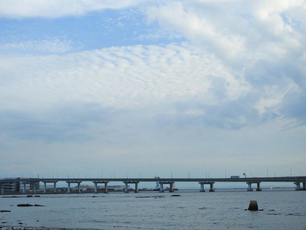 甲子園浜DSCN3913