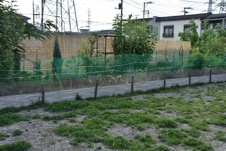 017 菜園