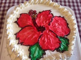 ケーキにハイビ