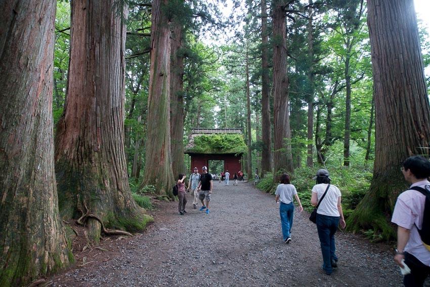 戸隠神社-1