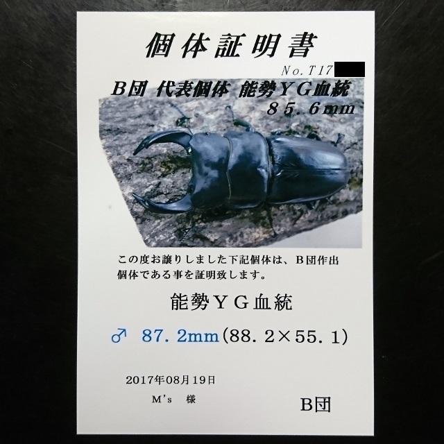 DSC_2753 (640x640)
