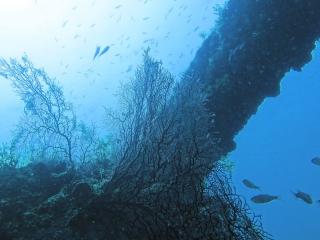 6漁礁01