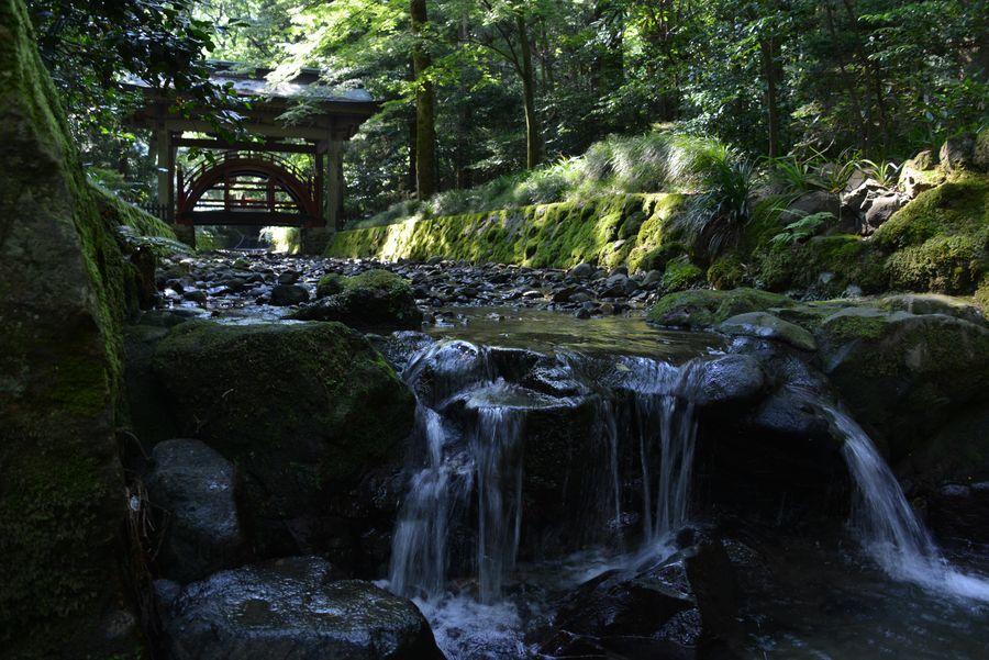 日陰の神社-1